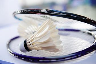 Ballsport Badminton